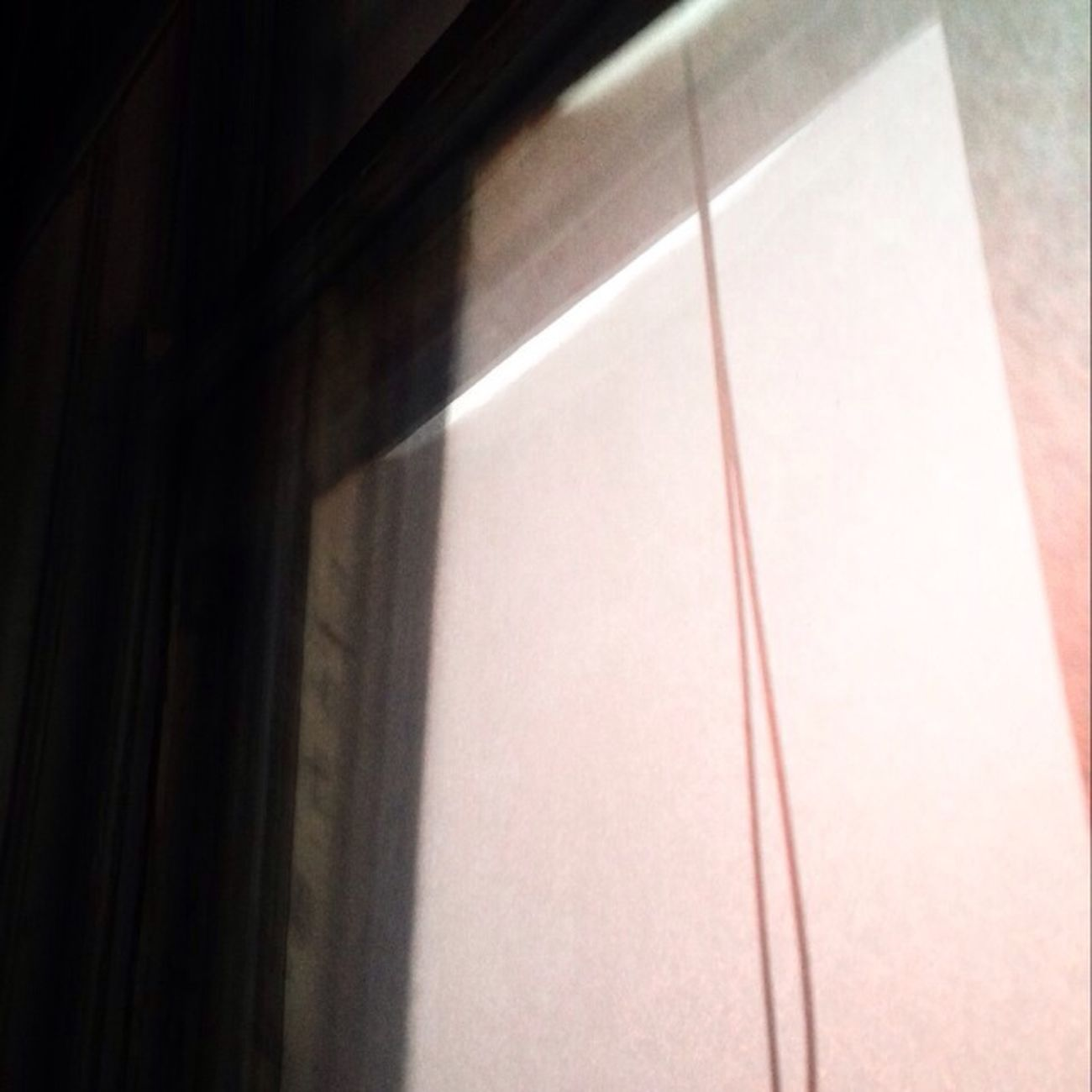 Mornings Windows