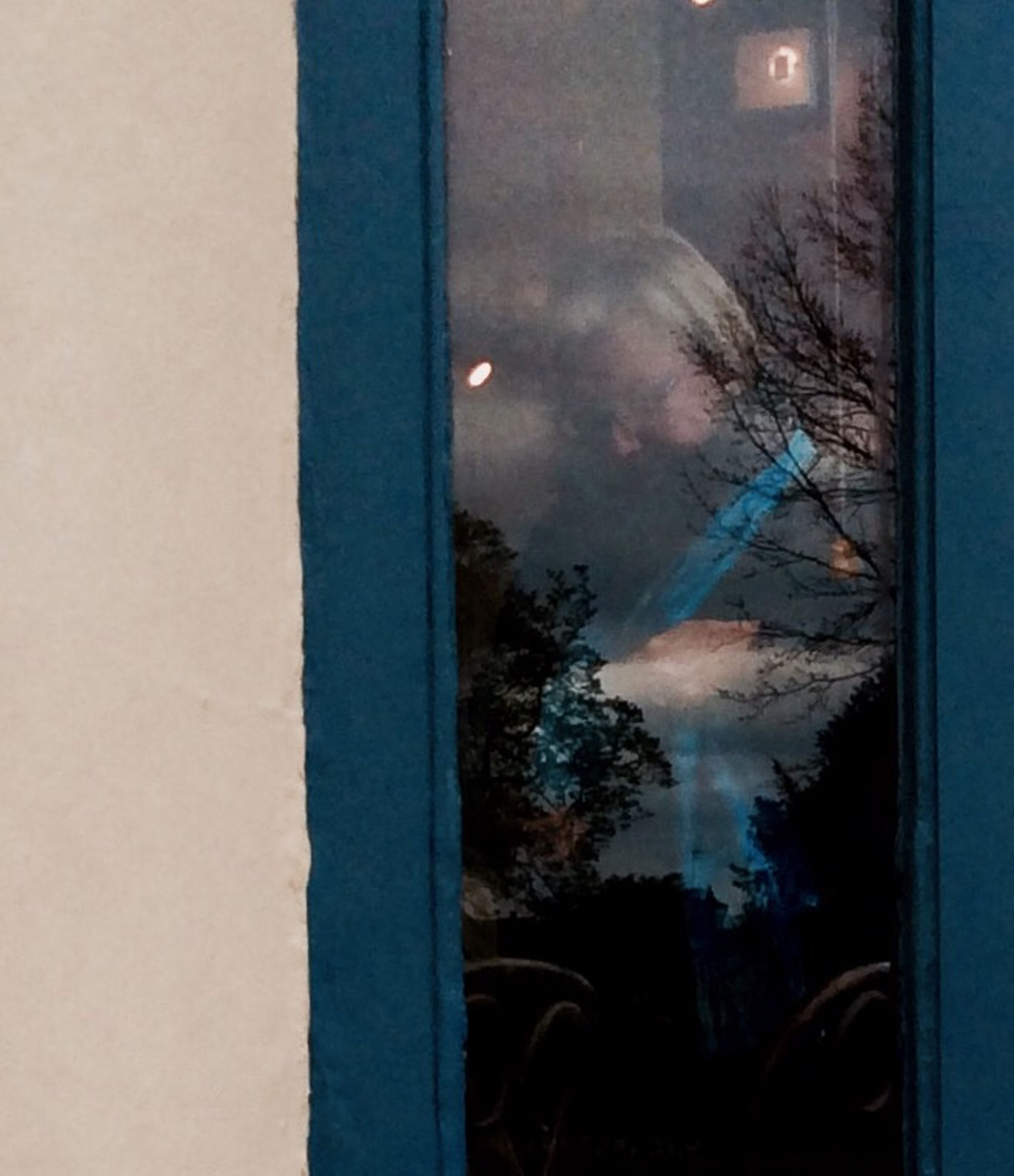 window, glass - material, tree, indoors, looking through window, snow, sky, no people, day, cold temperature, nature