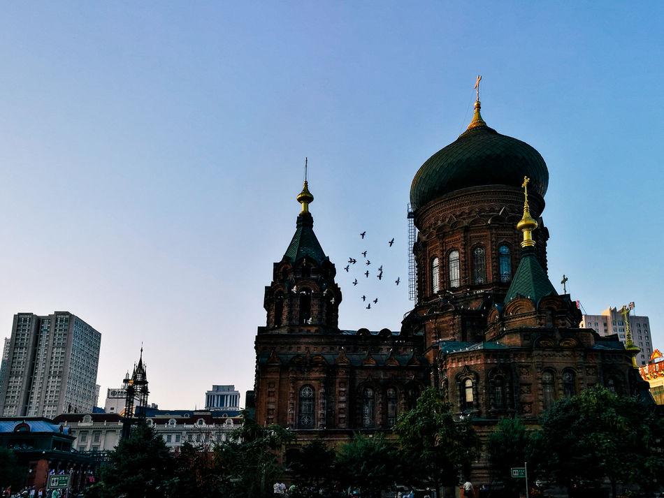 Architecture Birds Building Exterior Church Clear Sky Harbin Saint Sofia Church Sky Travel Destinations