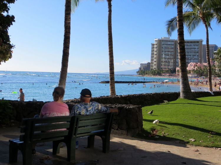 Beach Blue Casual Clothing Clear Sky Couple Hawaiian Shirt Hawaiian Style Leisure Activity Lifestyles Ocean View Outdoors Palm Trees Park - Man Made Space Park Bench Relaxation Sea Serenity Sitting Sunshine Tourism Vacations Waikiki Beach Water