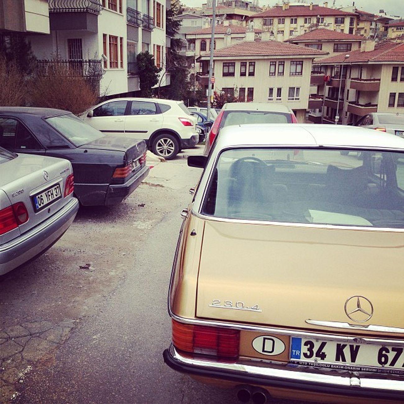 Mercedesbenz Mbfanphoto Mbfan Mb 220