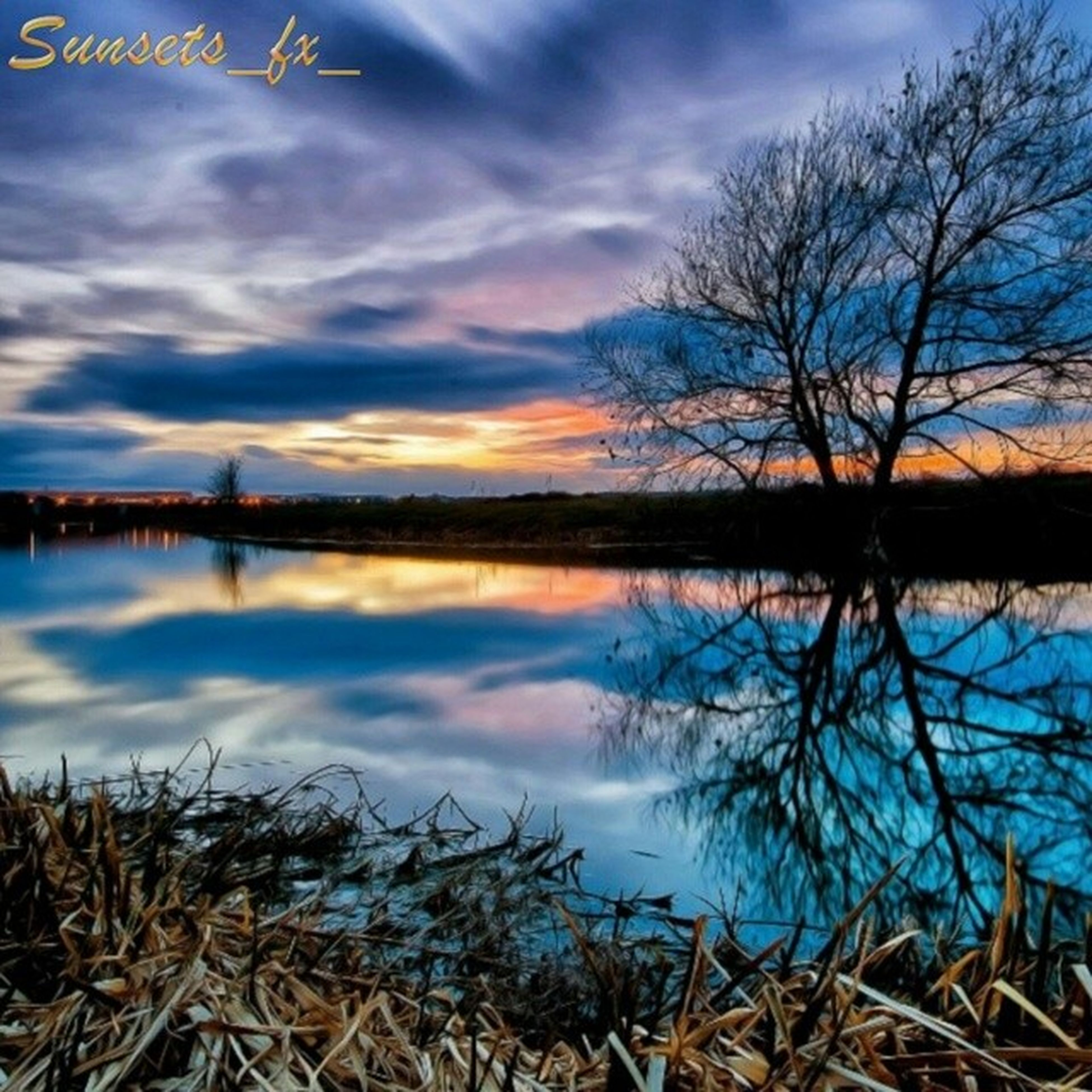 sky, tranquility, tranquil scene, water, lake, bare tree, reflection, scenics, beauty in nature, cloud - sky, sunset, nature, cloud, idyllic, lakeshore, tree, blue, calm, silhouette, grass