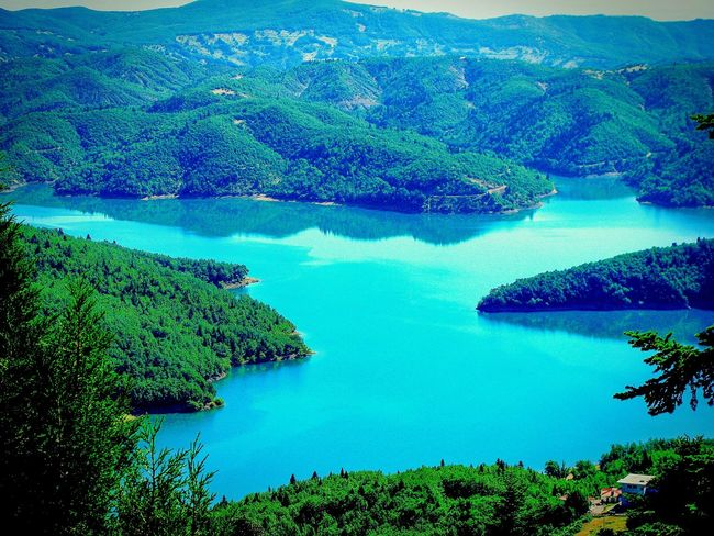 Forest Lake View No People Nature Picturesque Water Reflections Greenery A Moment Of Zen... Landscapes Mirrorless Blue Wave Highlights From Aerial Shot Shades Of Blue Seeing The Sights Beauty In Nature Reflection Splash Landscape Tranquility Peace And Quiet Lake Plastiras Karditsa  Summer Memories 🌄 Wallpaper Landscapes With WhiteWall