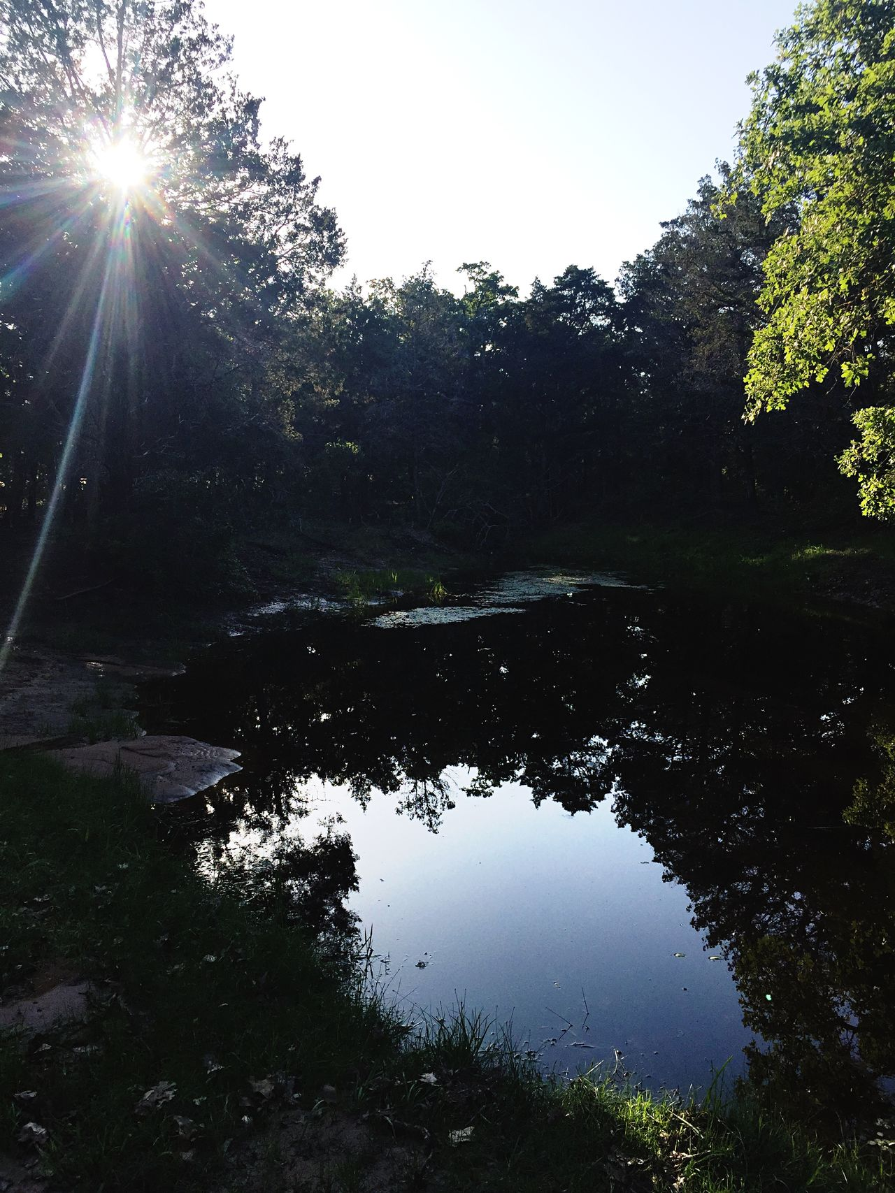 Pond Water Sun