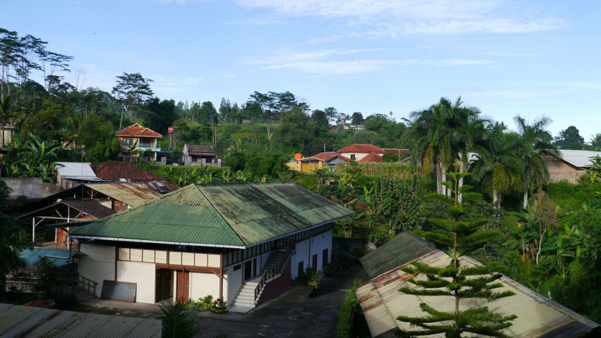 community, human settlement, leading, tropical climate, residential district