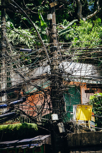 Illeale wires in the Rocinha Favela, Rio de Janeiro - Brazil Power Lines Rocinha Architecture Branch Building Exterior Built Structure Cable Cables Day Electricity  Electricity Pylon Favela Favelas Illegal Nature No People Outdoors Power Line  Power Supply Tree