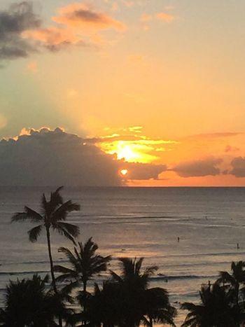 Pacific Sunset Oahu Hawaii Oahu / Hawaii Oahu, Hawaii Oahu Island Of Oahu, Hawaii Pacific Ocean Pacific Ocean View Pacific Ocean Sunset Pacific Ocean Sky No Edit/no Filter Ocean Cloud - Sky No People Horizon Over Water Silhouette Palm Tree Sun Sunset An Eye For Travel