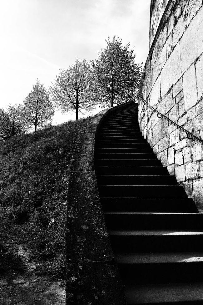 Montée vers le musée de la renaissance Architecture No People Outdoor Stairs Black and White