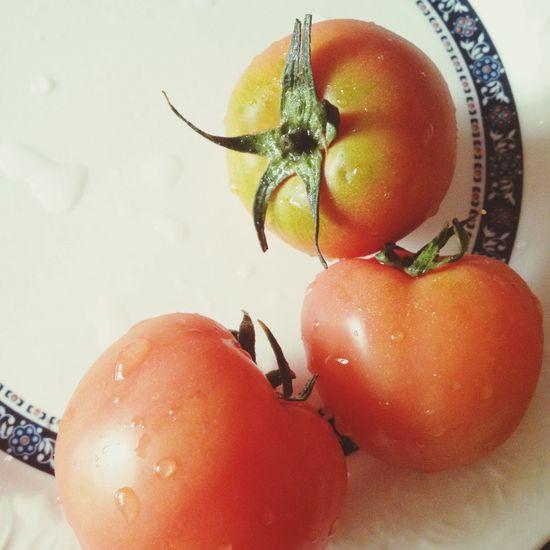 Vegitables Red 마토마토'