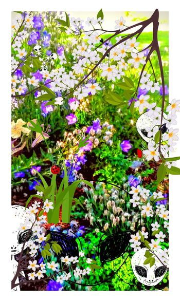My Artwork Alien Invasion Flower Bed Invasion Hiding In Plain Sight Can You Find The Hidden...? Aliens Can You See Them? How Many Do You See