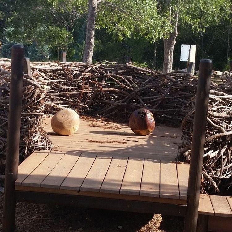 giant bird nests! complete with hatching eggs! Ladybirdwildflowercenter