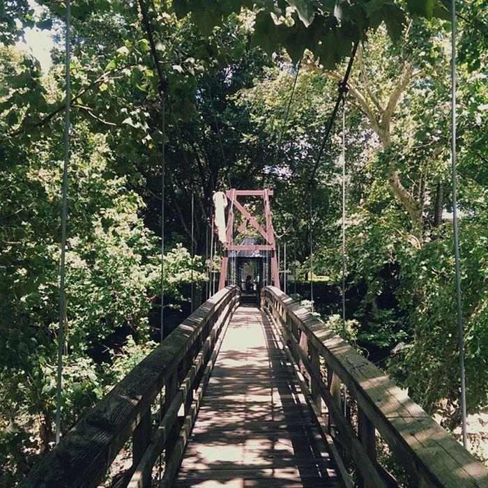 Suspension bridge Bridge Nature Houston Bayou vscocam