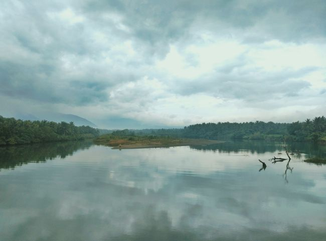 Mist view Landscape Lake Nature Reflection Tree Water Scenics Nature Reserve Accidents And Disasters Cloud - Sky Sky Beauty In Nature Arrival Outdoors No People Day Freshness Extreme Weather Natural Parkland EyeemPhilippines Philippines Eyeem Philippines Rear View Beauty In Nature