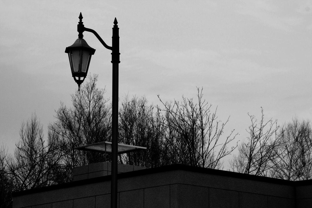 lighting equipment, low angle view, street light, architecture, built structure, tree, sky, outdoors, bare tree, street lamp, building exterior, gas light, no people, lantern, day, nature, city