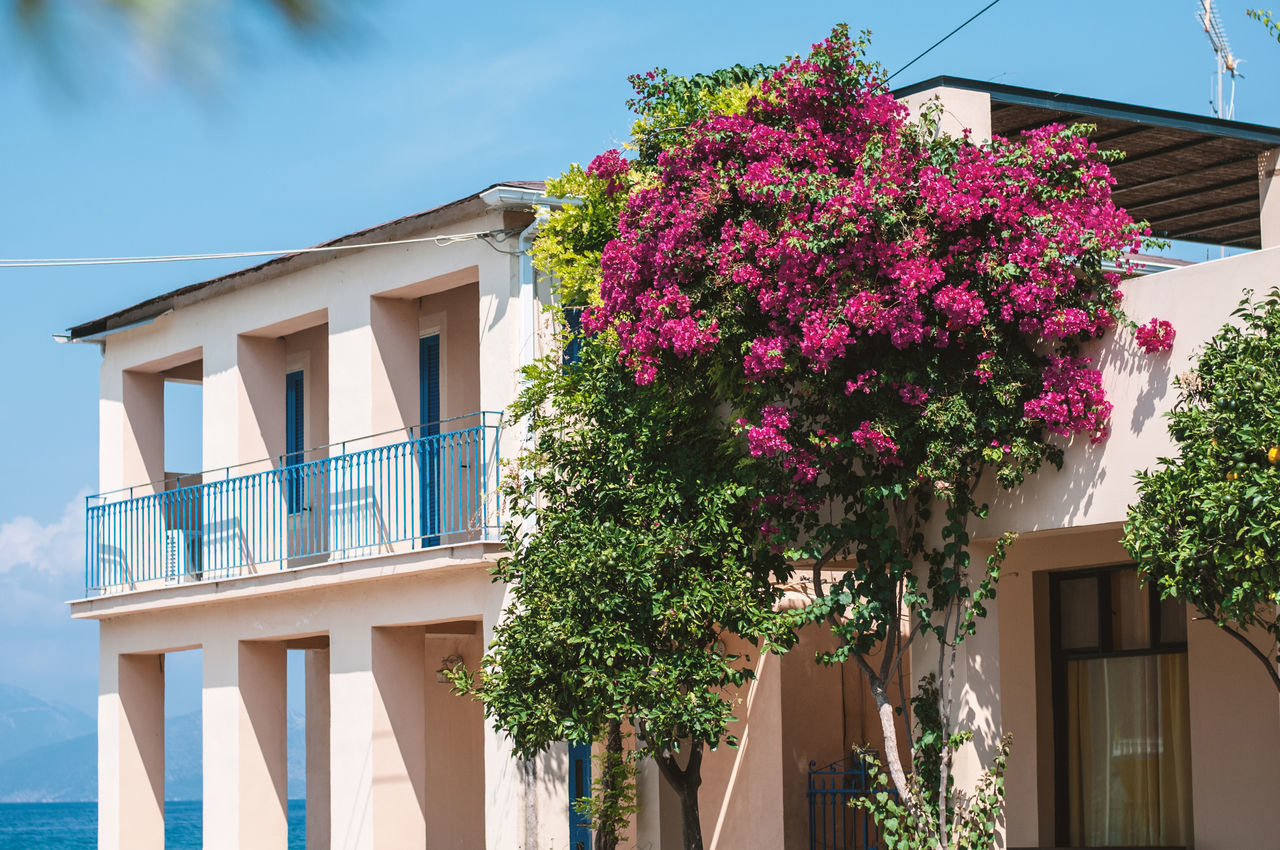 Architecture Balcony Building Exterior Built Structure Day Flower House Nature No People Outdoors Residential Building Sky Travel Destinations Tree