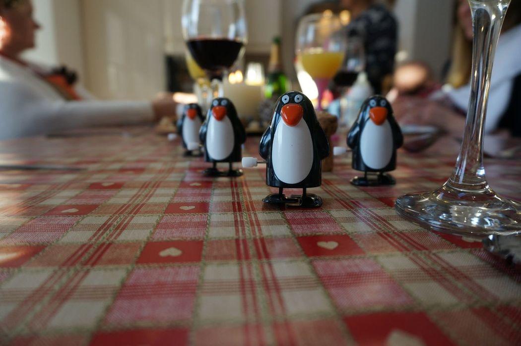March of the penguins - cracker toys last Christmas Penguins Focus Bit Of Fun Nex5 Sony Chrismas No Filter, No Edit, Just Photography