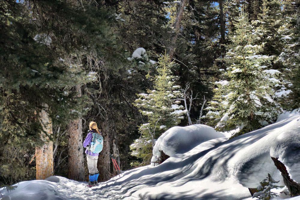 Sun-worshipper. Near Castle Mountain. Sun Light Sun Worshipper Sun Worship Forest Hiker Snow ❄ Patterns Wonderful Nature Fit Girl Golden Hair  Beams Of Light Light Kissed