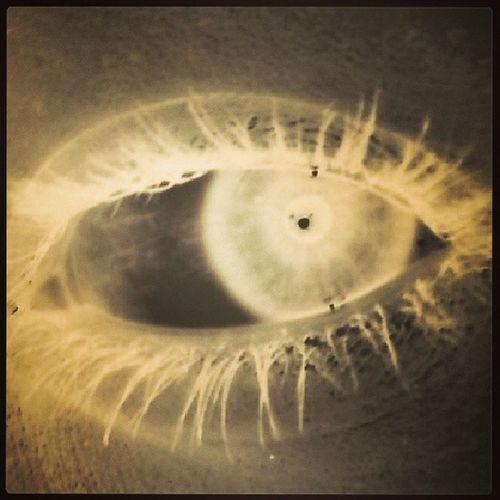 My eye filtered.. LovemyHazelEyes