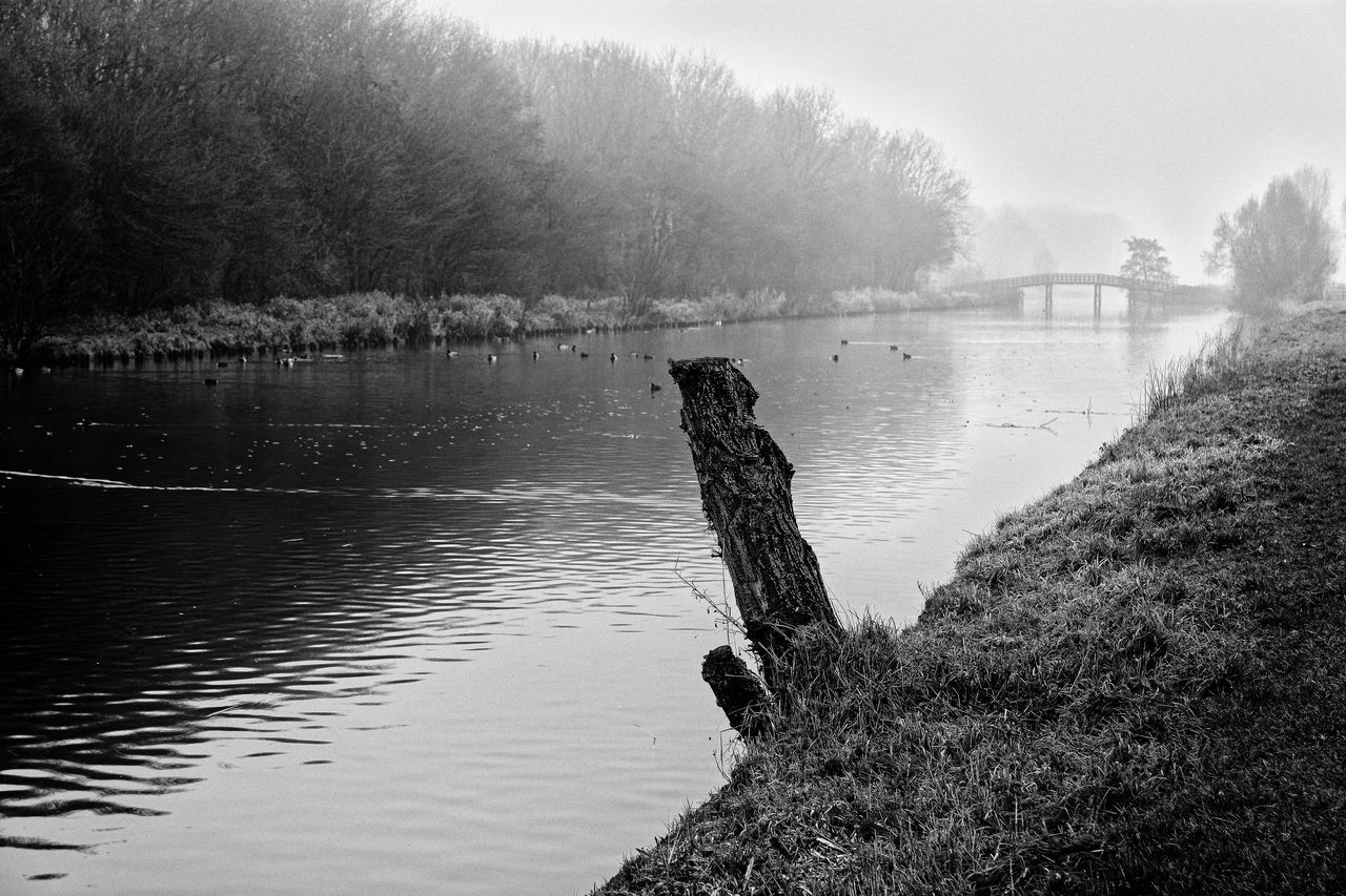 Stump Misty Bridge Beauty In Nature Fog Nature No People Outdoors Scenics Tranquil Scene Tranquility Tree Water