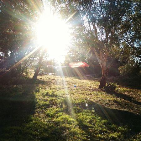Barossa Valley Sunlight Nature Outdoors Sunrays Washing Windy Day