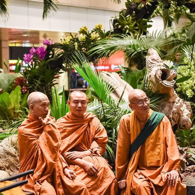 Monks Buddhist Buddhist Monks Candid Photography Candid