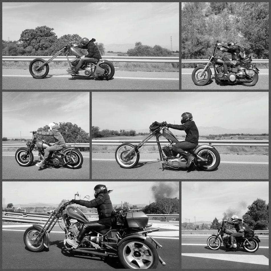 Born to be wild. Motorcycle Transportation RISK Mode Of Transport Adults Only People Adventure Sports Track Road Motorsport Land Vehicle Motorcycles Motorbike Born To Be Wild Harley Davidson Photooftheday EyeEm Best Shots TheWeekOnEyeEM EyeEm Diversity Lifestyles Best EyeEm Shot Real People