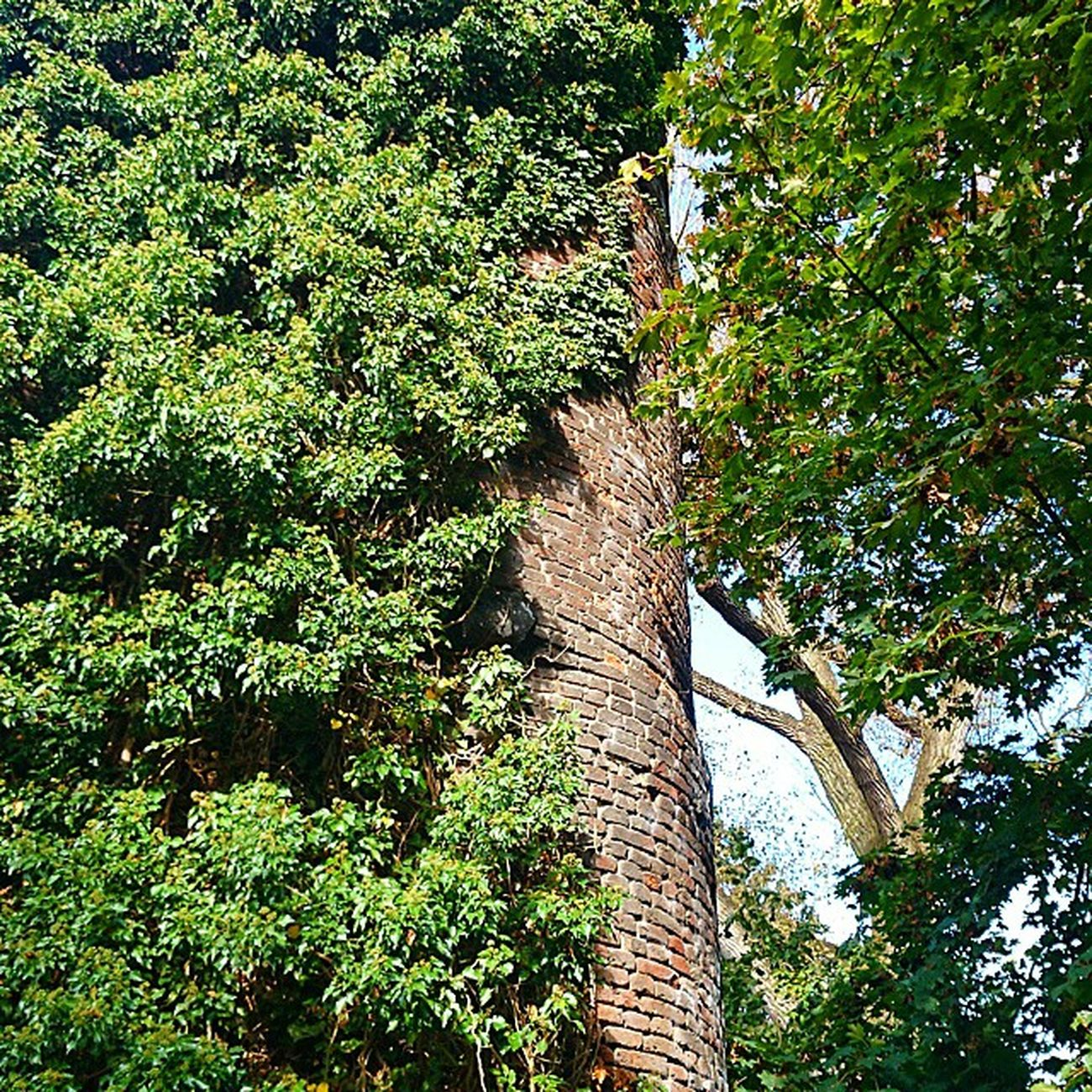 Teil der LinnerBurg in Krefeld Linn Castle
