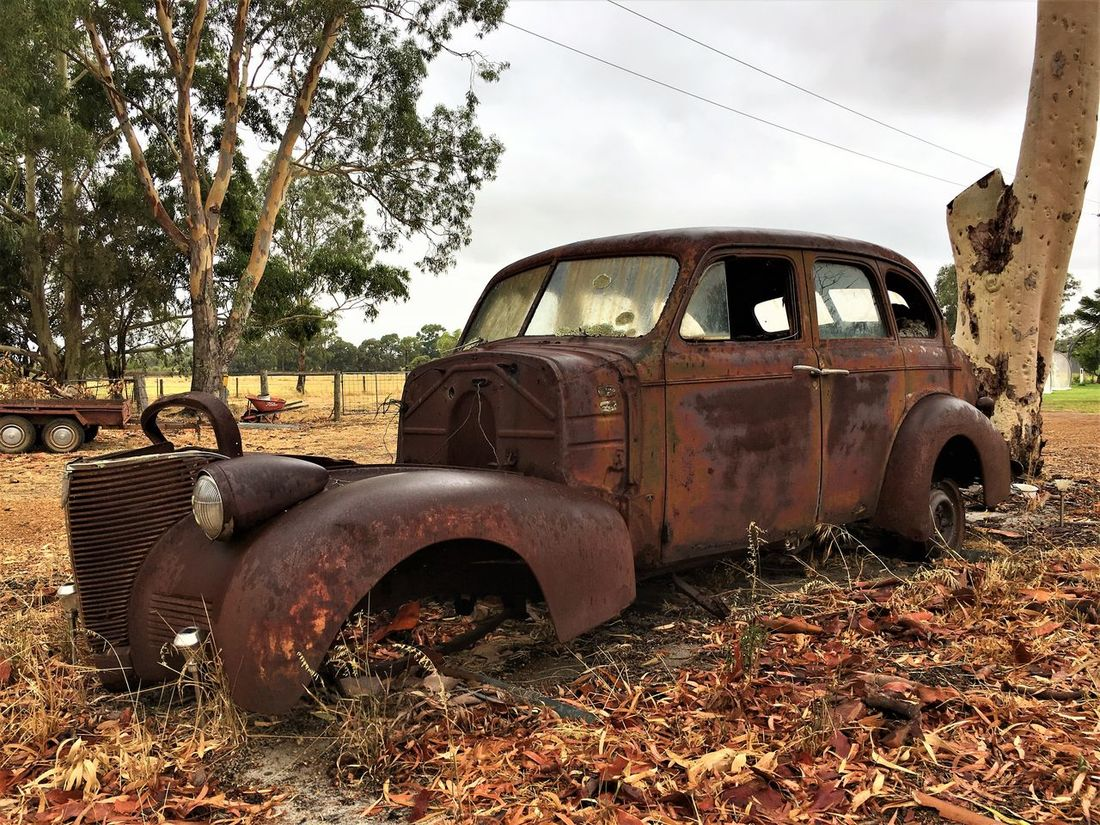Abandoned Antique Bad Condition Car Damaged Deterioration EyeEm Front View Land Vehicle Metal Mode Of Transport No People Obsolete Old Old-fashioned Outdoors Run-down Rural Scene Rusty Sky The Past Tranquil Scene Transportation Tree Weathered Adapted To The City Lieblingsteil