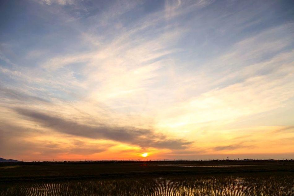 Evening Walk Twilight
