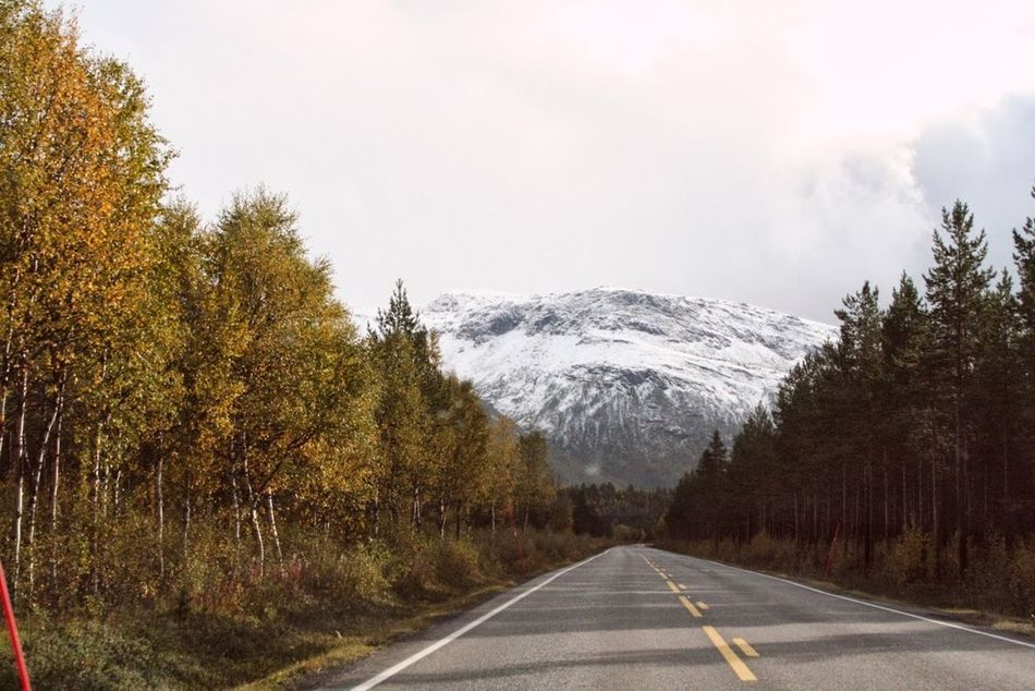 Beautiful stock photos of norway, Cold Temperature, Copy Space, Country Road, Day