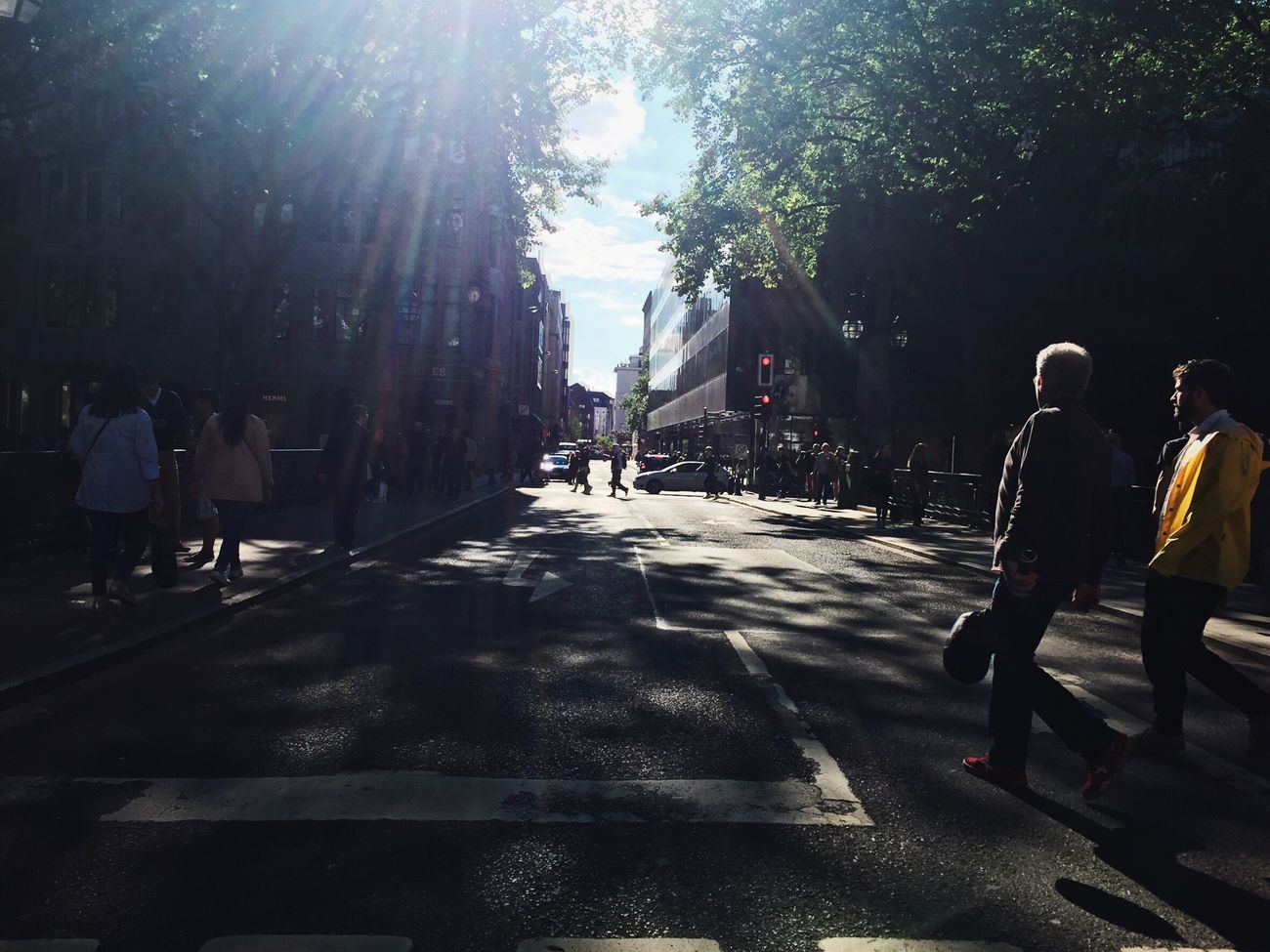 Sunlight Street Walking Real People Rear View Men Lens Flare Tree City Life Outdoors Road Shadow Day The Way Forward Women City Nature People Adult