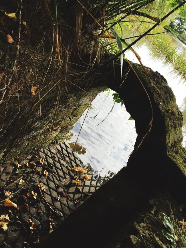 Water Damaged Destruction Obsolete Tranquility Nature