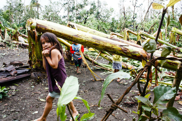 Kids near the fallen banana plants. Taken minutes after onslaught of Typhoon Glenda 2014, photo shows the wrath of water and wind. The town of Malvar, in this part of Batangas, Philippines is seldom visited by typhoon, stories of destroyed house, devastated crops are unheard and unseen here for years, with climate change change, these kind of images are more often than not. Destruction Documentary Eyeem Philippines How Do You See Climate Change? How's The Weather Today? Real People Showcase: November Tropical Storm Typhoon