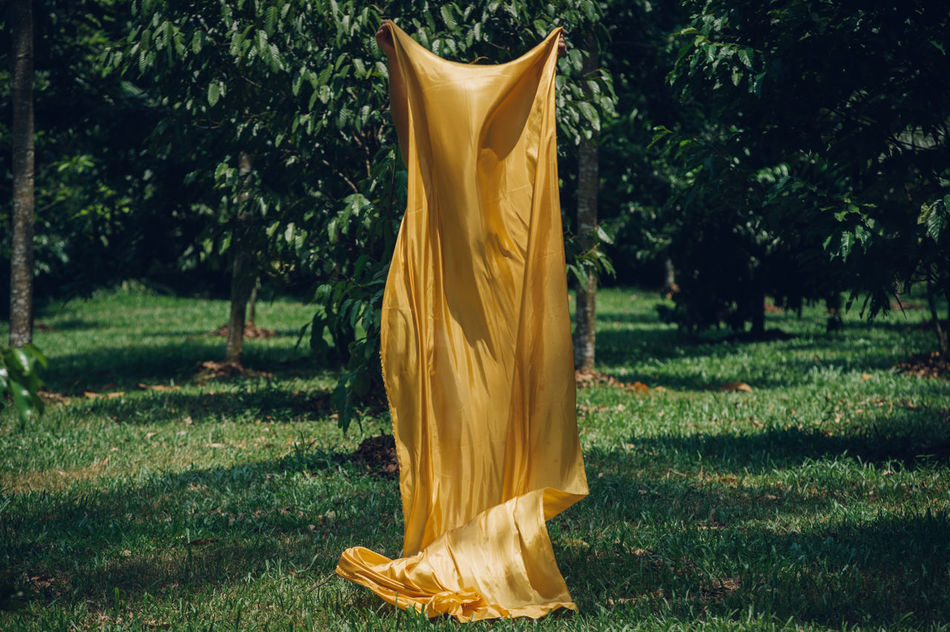 Art Is Everywhere Break The Mold Day Drying Fabric Field Grass Growth Nature No People Outdoors Textile Tree Yellow