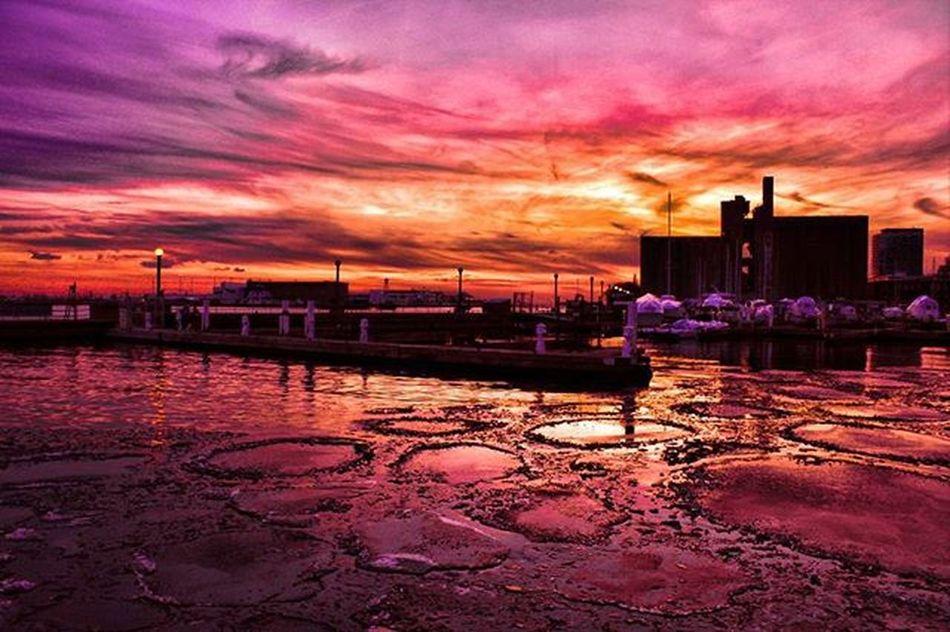 Toronto Harbourfrontcentre Mybackyard Cold Boats Sun Skyporn Skylovers Sunset Coldwinterevenings Prettysky Prettyskys Sunsets Colorful Purple Red Orange Fireinthesky Firesky @moodygrams @torontoclx @meatlesskarma @kidoctober @6ixwalks @ab_photos.to @claudia_goodfellow