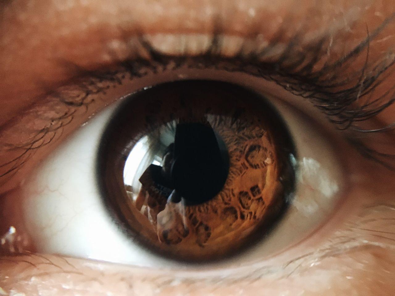 Eyes Eye Pattern Pattern Brown Eyes EyeEm Best Shots Eye Detail Details Close Up Lashes Eye Ball Eye Color