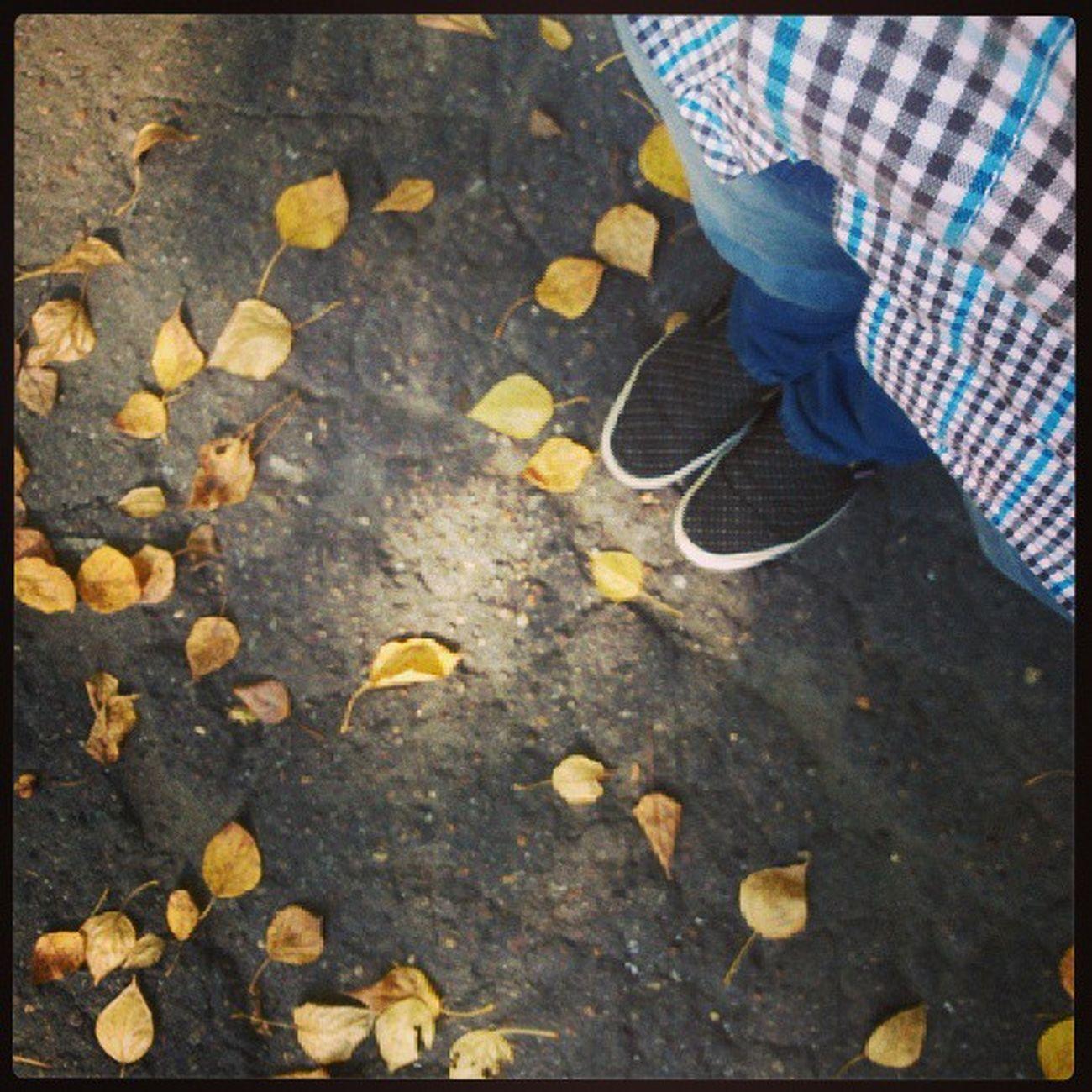 Осень уже, безысходность