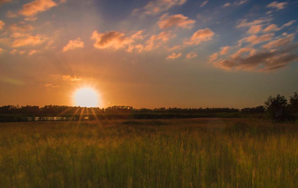 Beautiful Sunrise Gelderland Gelderse Streken Geldersestreken Hurwenensekil Huwenense Kil Polder Rivierenland Sunny Clouds Sunrise Sunrise Above Field Sunrise Silhouette Sunrise_sunsets_aroundworld Teletubbie Land Teletubbies Zaltbommel