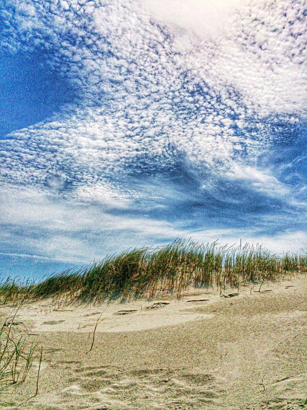Taking Photos Dunes Summertime Nature