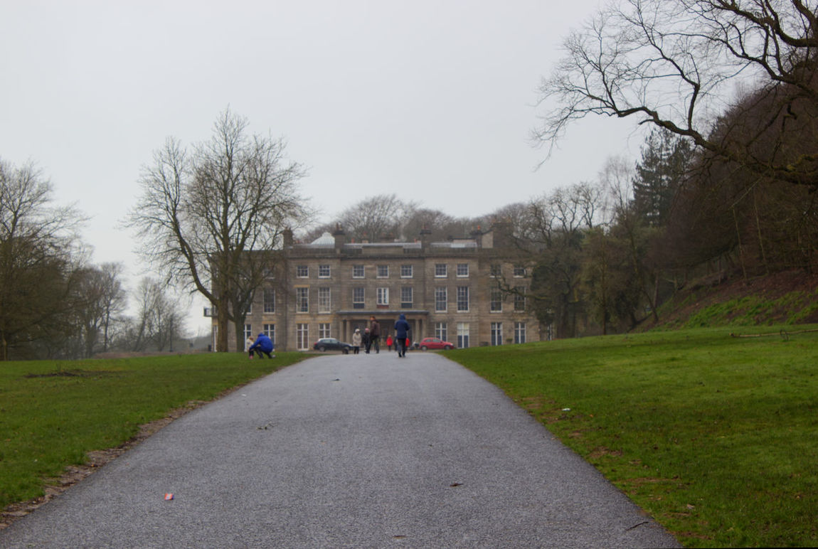 Tree Bare Tree Politics And Government Tourism People Sky Day Outdoors Real People Hall Haigh Hall Adults Only
