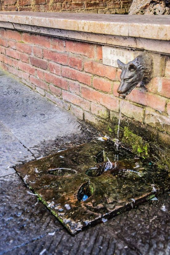 Brick Wall Wall - Building Feature Built Structure Architecture Brick Day Water Outdoors Damaged Weathered Messy No People