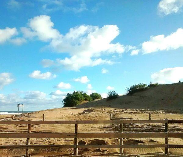 Vallas al mar Sea Sand Dune Sand Sand & Sea Fence Clouds & Sky Argentina Necochea. Argentina Day Sky No People Tree Nature EyeEmNewHere
