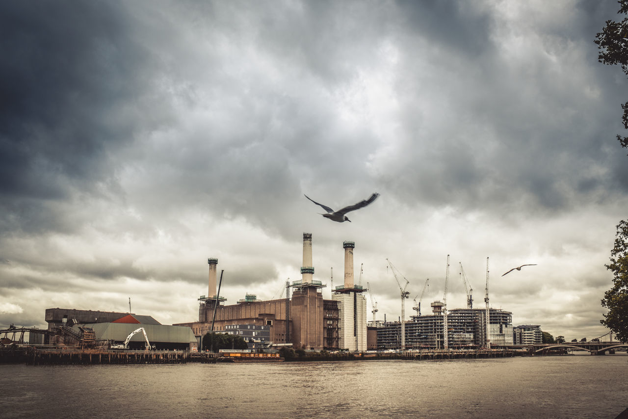 Architecture Art Deco Battersea Battersea Power Station Bird London River Sky Sky And Clouds Thames