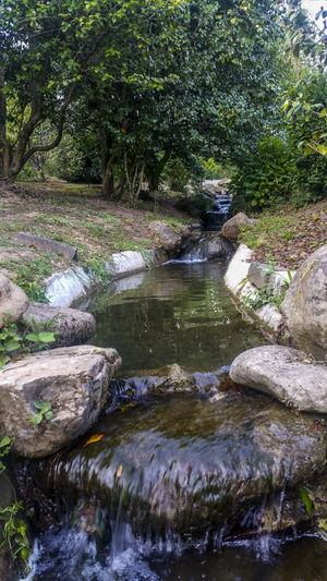 Brook Bucolic Landscape Creek Idyllic Idyllic Scenery No People Rocks And Water Rural Scene Stream Tranquil Scene Tranquility Water Water Creek Water Stream