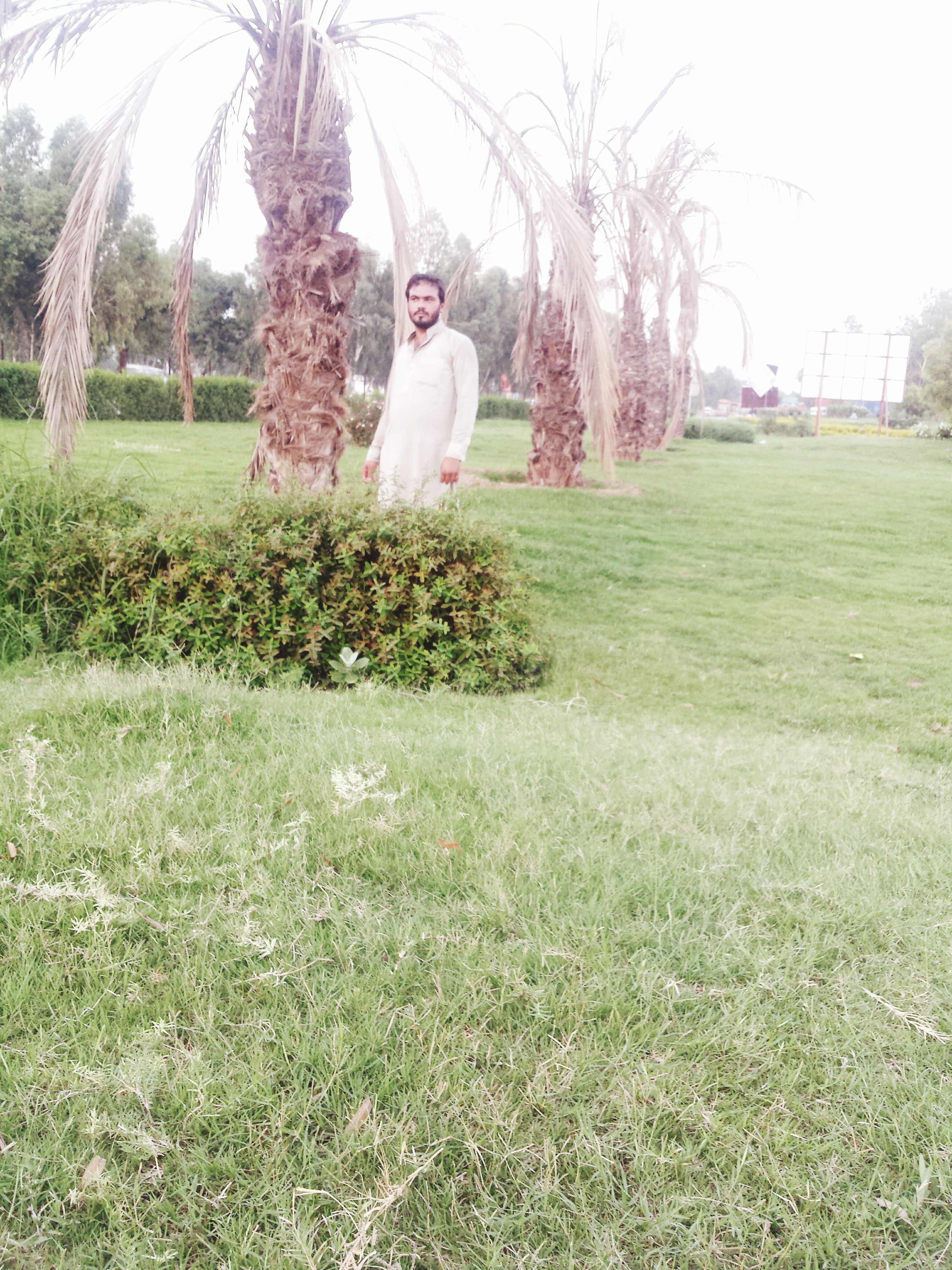 grass, tree, lifestyles, field, leisure activity, person, full length, casual clothing, park - man made space, grassy, young adult, childhood, standing, green color, front view, day, growth, lawn