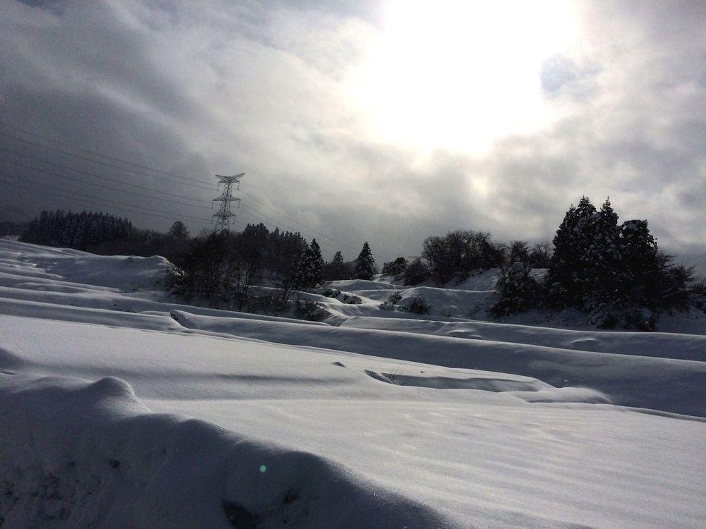 Snow Sun White Paddy Field