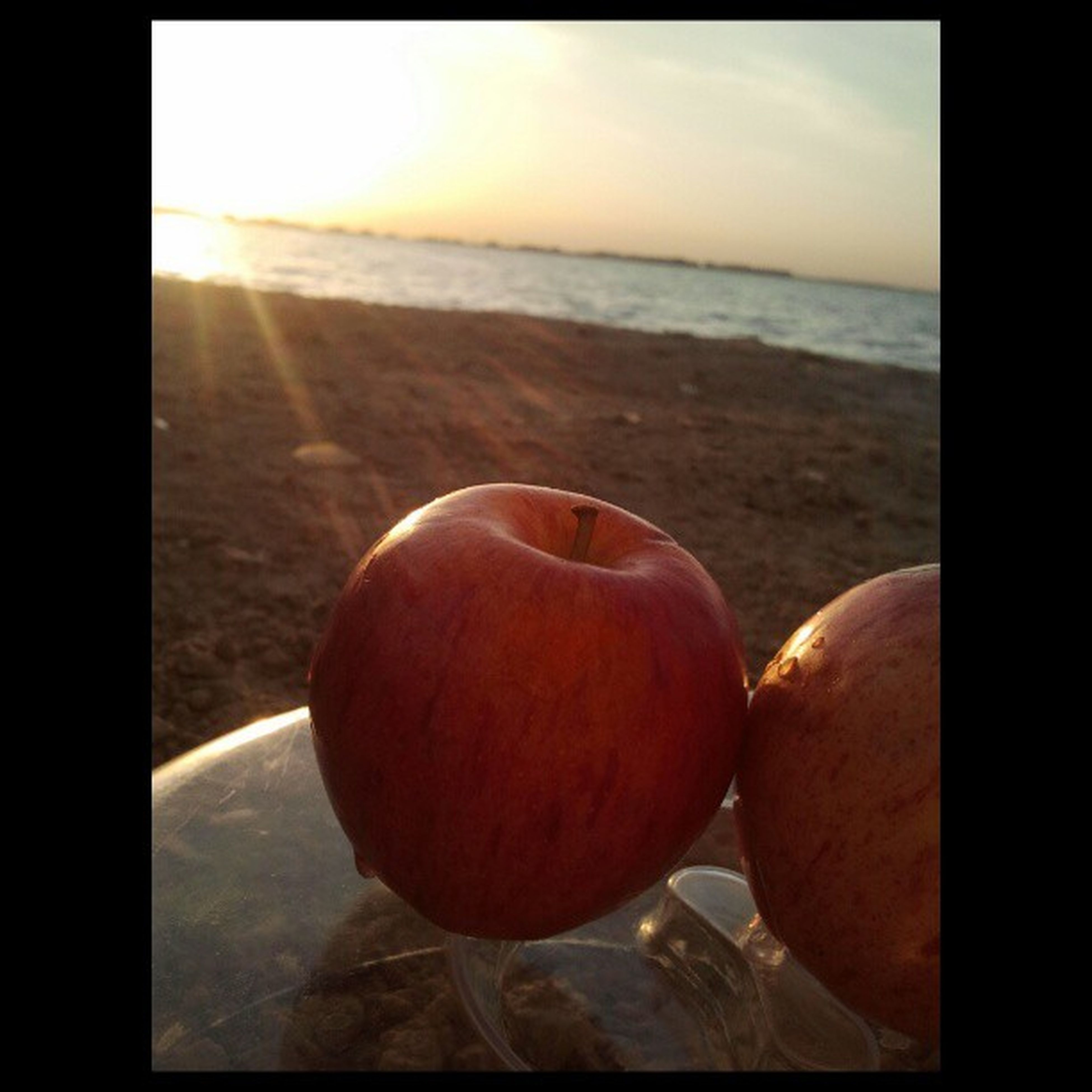 transfer print, sunset, sun, auto post production filter, horizon over water, sky, sea, close-up, sunlight, food and drink, nature, beach, orange color, tranquil scene, tranquility, focus on foreground, beauty in nature, scenics, no people, healthy eating