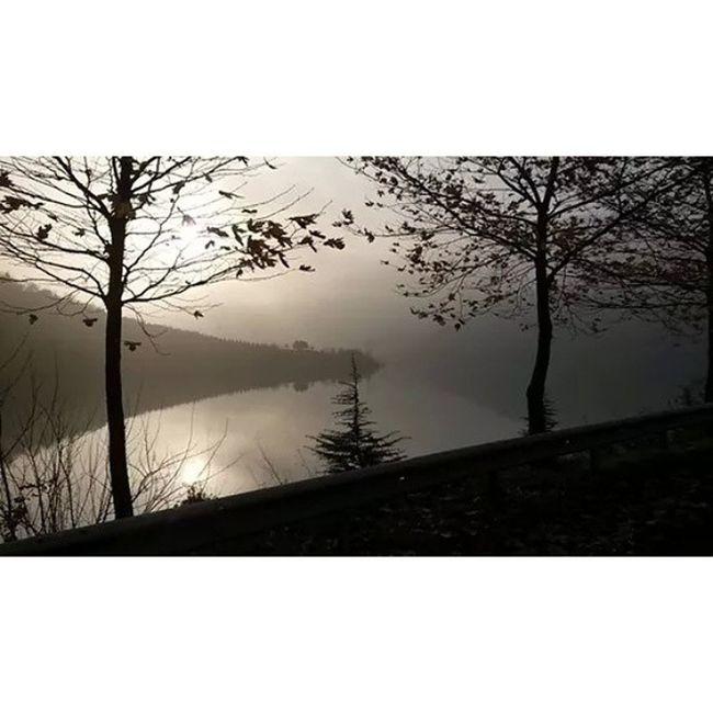Nofilter Nature Keyif Kocaeli izmit yuvacık foggy tour bicycle relax