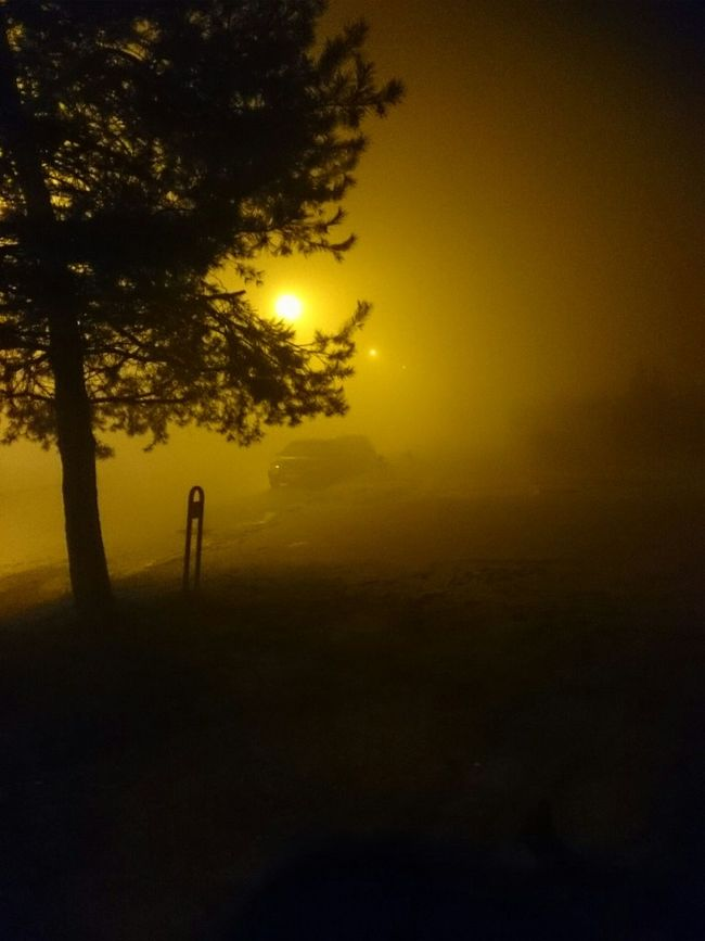 Beutiful  Night In Lithuania