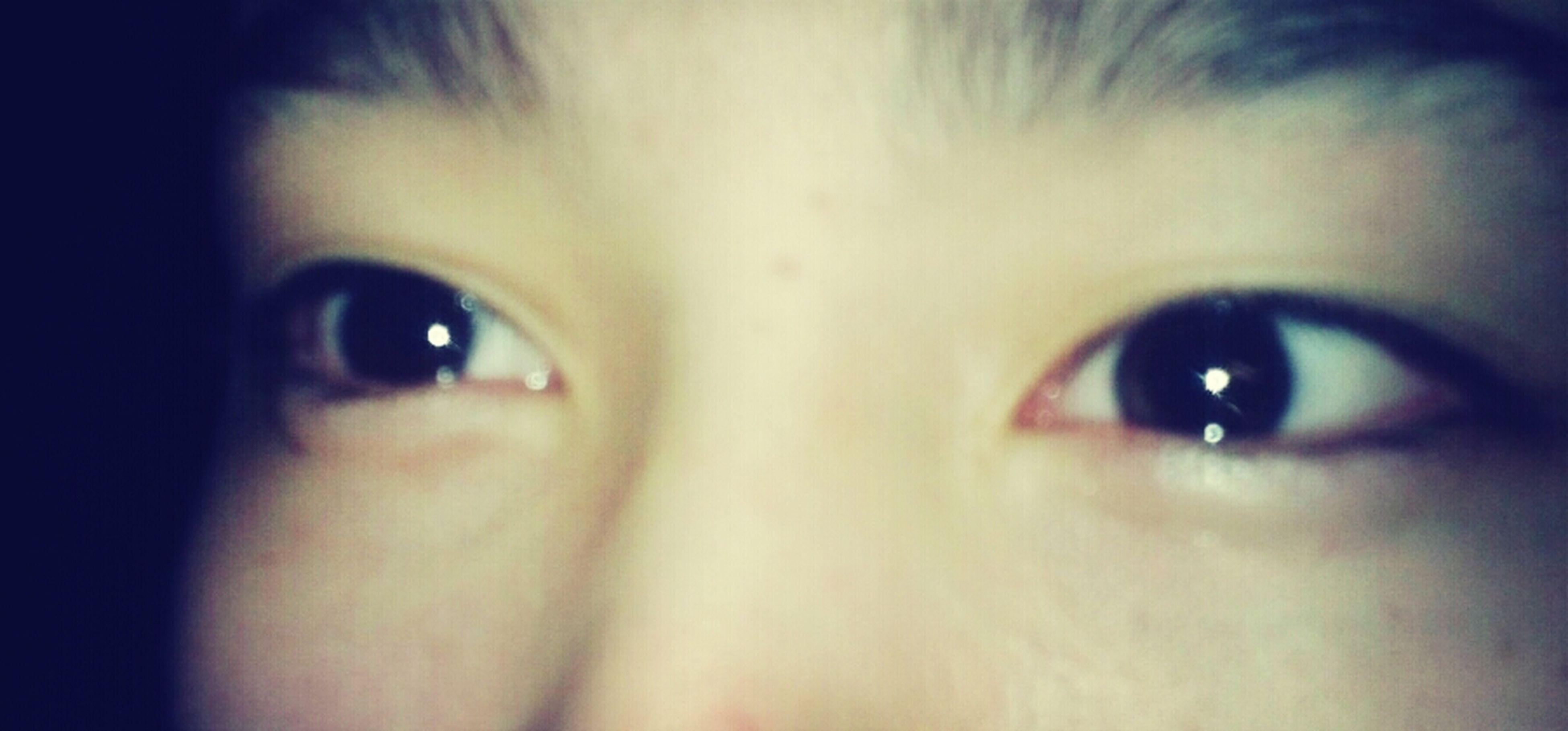 looking at camera, portrait, close-up, headshot, human eye, human face, indoors, blue eyes, eyelash, front view, staring, person, lifestyles, part of, young adult, green eyes, eyesight